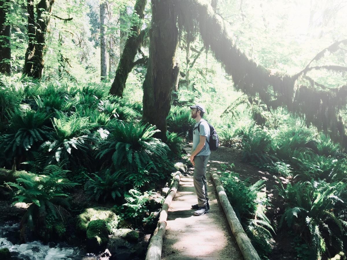 Hoh Rainforest –2018